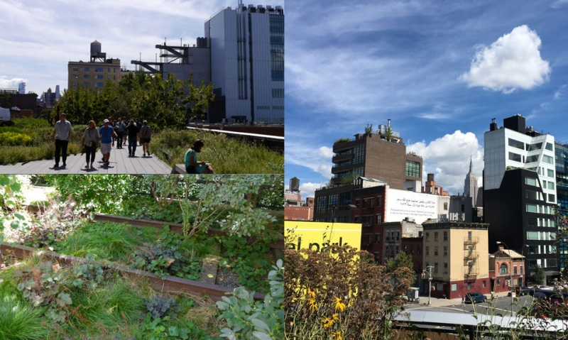 Views from The High Line